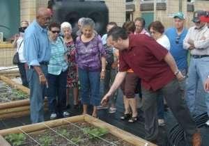 Karma Yoga with Master Gardeners Deland, Florida